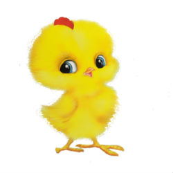 Стихи про цыпленка