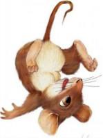 Мышка шалунишка